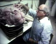 The Lost Documentary of Michel Parbot The Making of The Empire Strikes Back